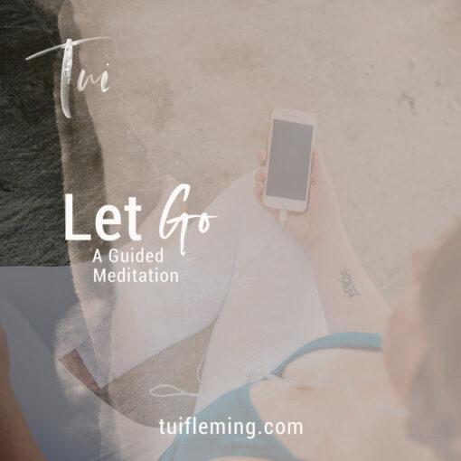 Tui Fleming LetGo Guided Meditation